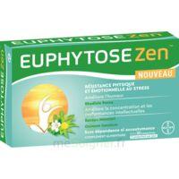 Euphytosezen Comprimés B/30 à TOULOUSE
