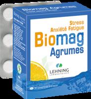 Lehning BIOMAG Comprimés à croquer agrumes B/90 à TOULOUSE