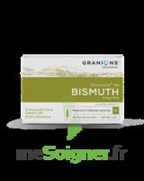Granions De Bismuth 2 Mg/2 Ml S Buv 10amp/2ml à TOULOUSE