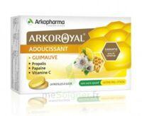 Arkoroyal Propolis Pastilles Adoucissante Gorge Guimauve Miel Citron B/24 à TOULOUSE