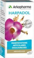 ARKOGELULES HARPAGOPHYTON, 150 gélules à TOULOUSE