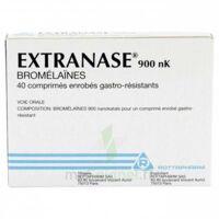 Extranase 900 Nk, Comprimé Enrobé Gastro-résistant à TOULOUSE