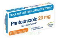 Pantoprazole Eg Labo Conseil 20 Mg Cpr Gastro-rés Plq/7 à TOULOUSE