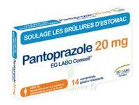 Pantoprazole Eg Labo Conseil 20 Mg Cpr Gastro-rés Plq/14 à TOULOUSE