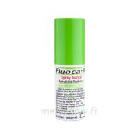 Fluocaril Solution buccal rafraîchissante Spray à TOULOUSE