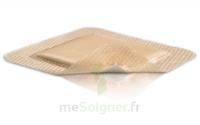 Mepilex Border Pansement hydrocellulaire stérile 14x15cm B/16 à TOULOUSE