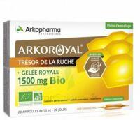 Arkoroyal Gelée royale bio 1500 mg Solution buvable 20 Ampoules/10ml à TOULOUSE