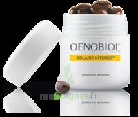Oenobiol Solaire Intensif Caps peau normale Pot/30 à TOULOUSE