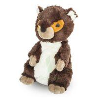 Soframar Bouillotte Marmotte à TOULOUSE