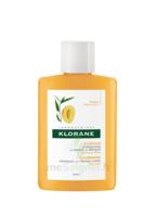 Klorane Capillaire Shampooing Beurre De Mangue 25ml à TOULOUSE