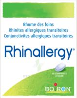 Boiron Rhinallergy Comprimés B/40 à TOULOUSE