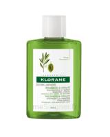 Klorane Capillaire Shampooing Extrait Essentiel Olivier 25ml à TOULOUSE
