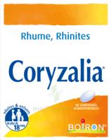 Boiron Coryzalia Comprimés Orodispersibles à TOULOUSE