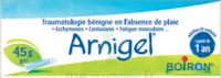 Boiron Arnigel Gel T/45g à TOULOUSE